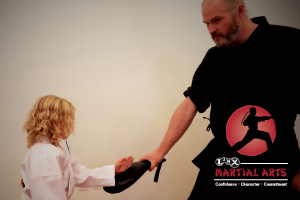 LINX Martial Arts
