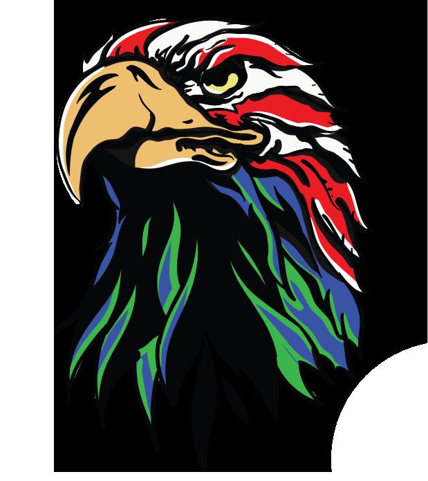 Multi-colored eagle